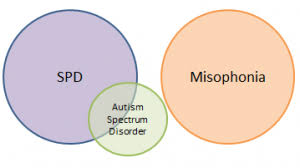 autism-misophonia-link-information-top-nyc-specialist-01